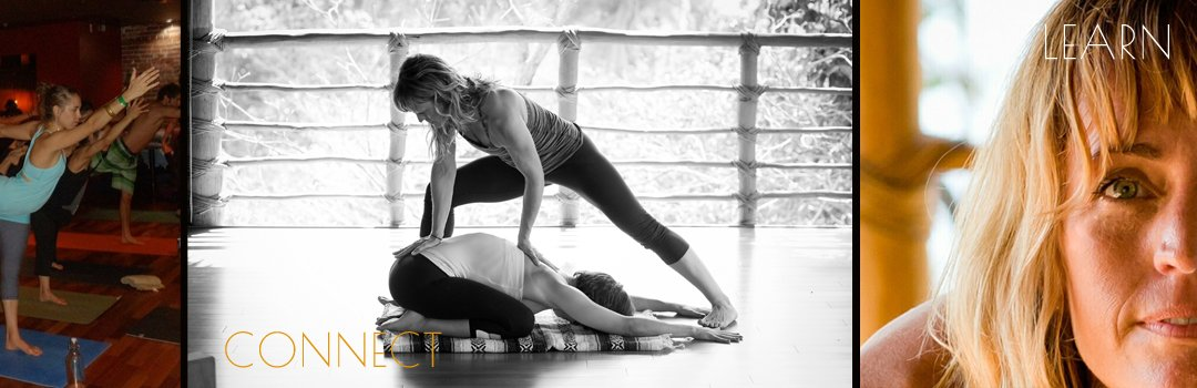 study yoga with Jill Knouse